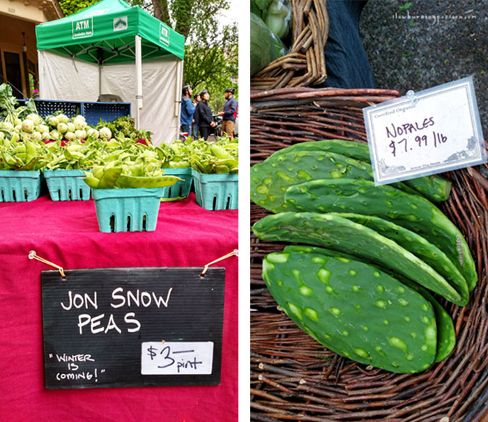 Nopales and Jon Snow Peas from the Portland Farmers Market