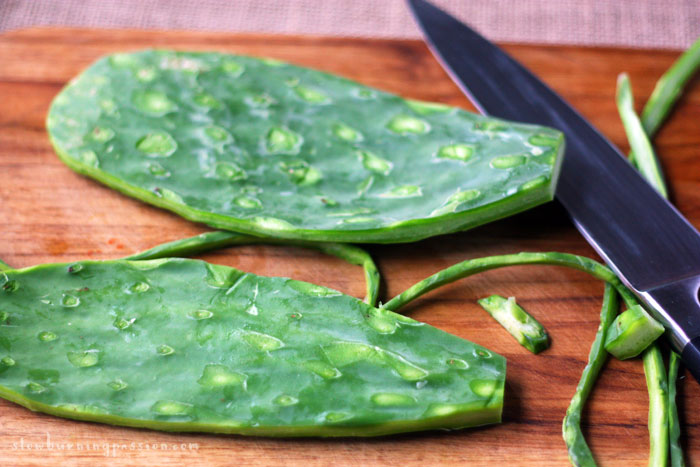 Nopal cactus paddles, trimmed for a nopal cactus taco recipe.