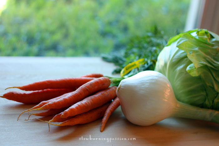 Carrots onion and cabbage. Ingredients for curtido.